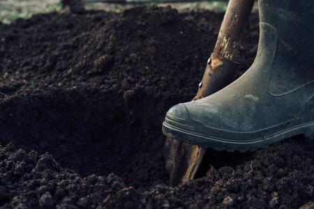 Unrecognizable man digs a hole by shovel in garden Foto de archivo