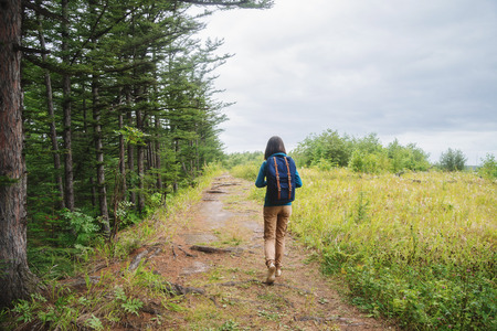 people and nature: Hiker girl with backpack walking on footpath in summer forest, rear view