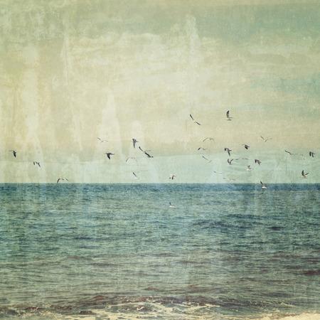 gaviota: Bandada de gaviotas volando sobre el mar azul. Imagen de la vendimia Foto de archivo