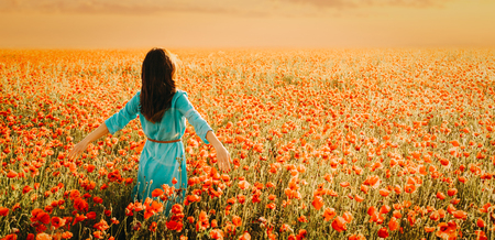 Brunette young woman wearing in blue dress walking in poppies flower meadow at sunset. Stock Photo
