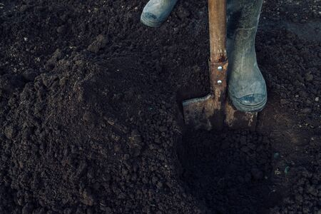 Man digs a hole by shovel in garden, face is not visible, agriculture