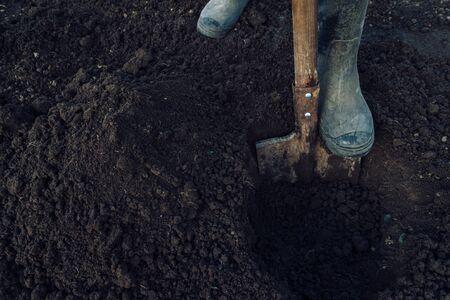 Mann gräbt ein Loch mit Schaufel im Garten, Gesicht ist nicht sichtbar, Landwirtschaft