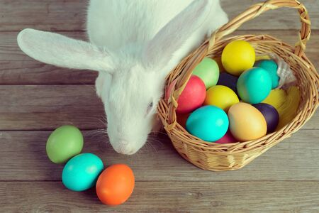 White Easter bunny with basket of colored eggs on wooden table, top view