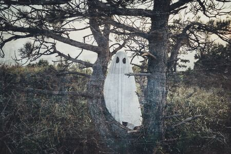 Man in costume of white sheet ghost with black eyes walking among old dry trees outdoor. Theme of Halloween and horror. Vintage image