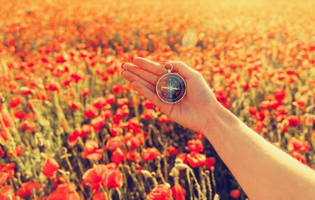 Female hand with compass on background of wildflowers meadow in summer, point of view. Concept of travel. Imagens