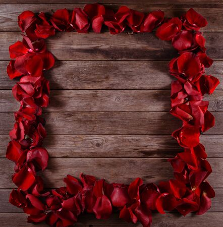 Square frame of red rose petals, space for text