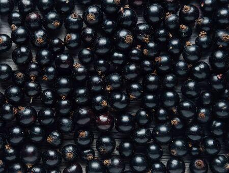 Black currant, texture Banque d'images