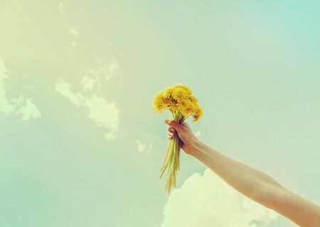 Woman holding bouquet of yellow dandelions on background of sky in summer, close-up of hand with flowers. Фото со стока
