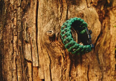 Bracelet paracord is hanging on a tree in autumn forest, no people Banco de Imagens