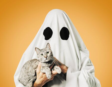 Halloween cute white ghost with a cat on a yellow background. Stok Fotoğraf