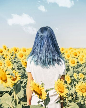 Back view of blue hair woman standing in blooming sunflowers field on sunny summer day.