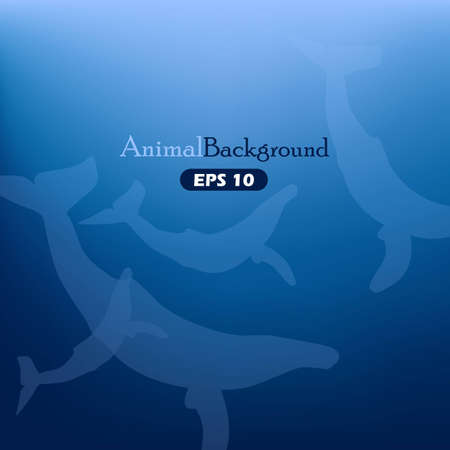 Animal background with whales Stock Vector - 16429459