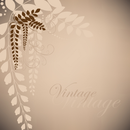 Brown vintage with acacia flowers Stock Vector - 16429455