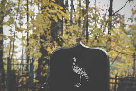 bird painted on tombstone. Muslim grave in an Islamic cemetery. graveyard background