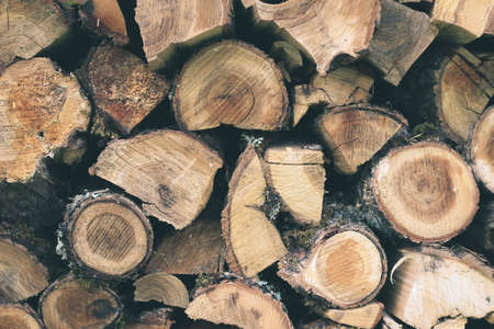 Timber for Firewood stacked by a wall. Kindling for countryside fireplace