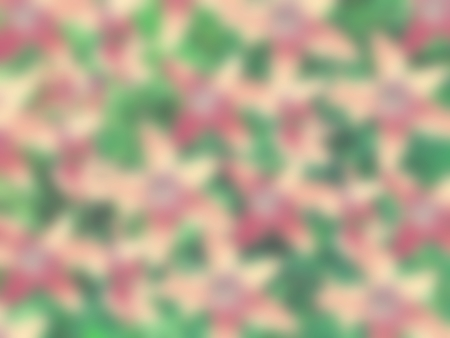 campanula: Many pink bell campanula flower blurred green abstract background Stock Photo