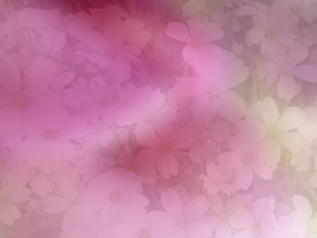 smudge: Gypsophila flower pink smudge blurred soft romantic floral abstract background Stock Photo