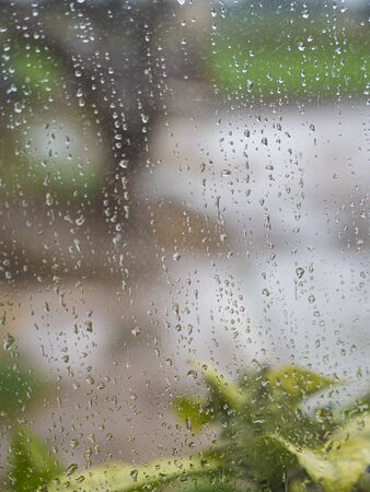 Water drops on a glass with an unfocused closeup of a plant and a tree in the background Stock fotó