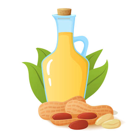 Peanut oil in glass bottle.Nut with palm leaves. Flat illustration.
