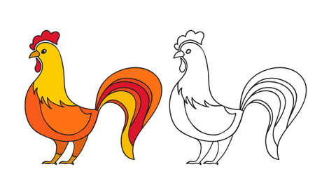 Rooster hand drawn.Chinese year symbol.