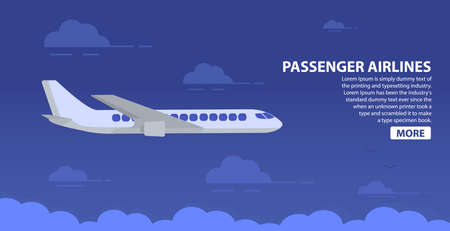 Passenger airlines. Sky airplane. Jet plane. Aviation airliner. Poster flat vector.