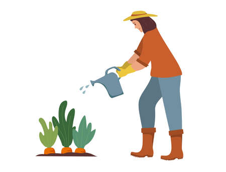 Woman gardener waters plants from a watering can. Agriculture gardener hobby.