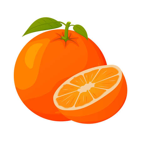 Realistic orange fruit with a slice. Ripe tropical fruit. 向量圖像