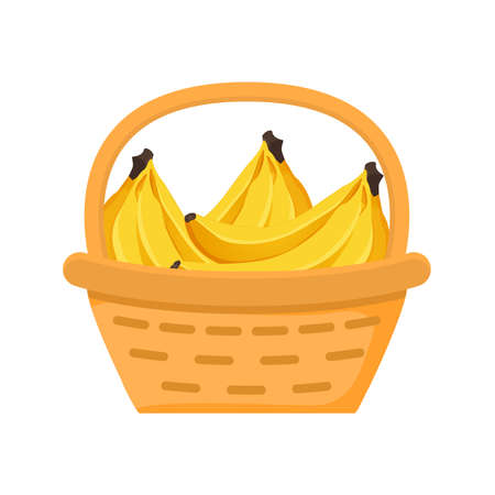 Banana fruit basket. Flat illustration. Harvesting fruits.