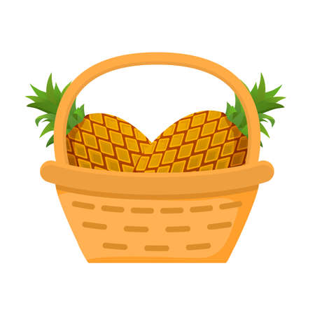 Pineapple fruit basket. Flat illustration. Harvesting fruits.