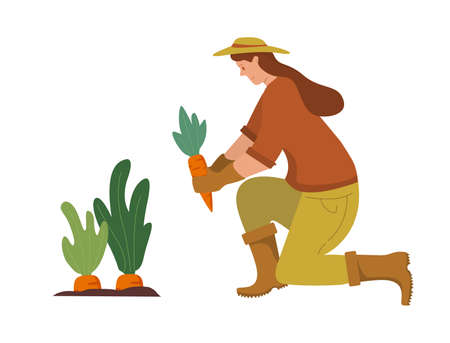 Woman waters plants from a watering can.Agriculture gardener hobby. Work in the garden.