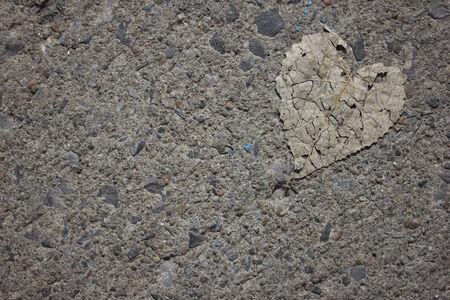 Heart leaf on concrete