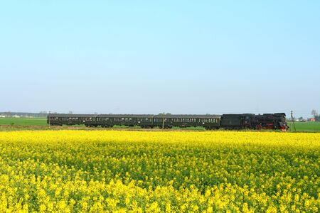 Steam retro train passing the rapeseed field Stock Photo