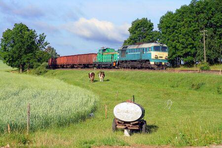 telegraphy: Commerciali pesanti treno che passa i prati con le mucche e serbatoio acqua