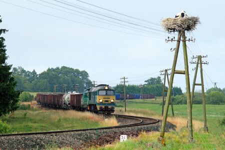 foretop: Rural landscape with freight train and stork nest
