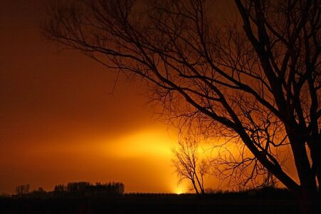 A lonely trees with huge afterglow on the sky