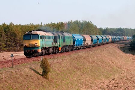 Freight train hauled by two diesel locomotives passing the forest