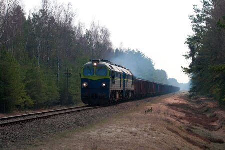 diesel locomotives: Freight train hauled by two diesel locomotives passing the forest