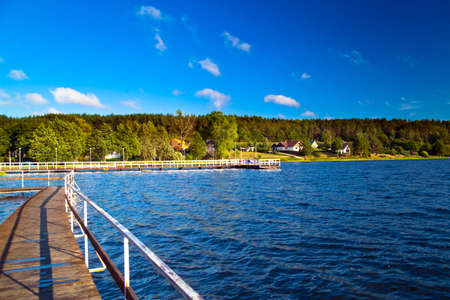 Summer landscape at the lake and forest photo
