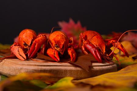 Red boiled crawfish photo