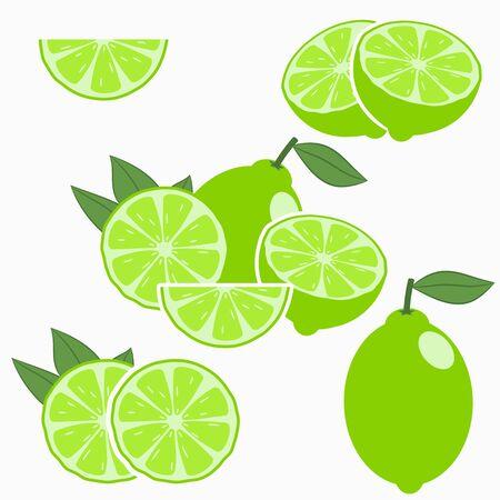 Lime. Citrus fruit with leaf - whole, half, slice. Vector illustration. Banque d'images - 131361014