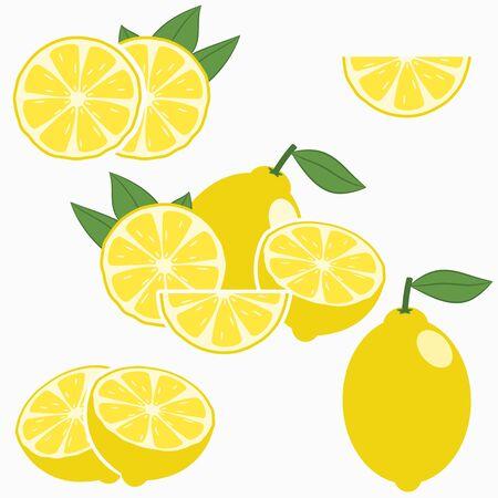 Lemon. Citrus fruit with leaf - whole, half, slice. Vector illustration.