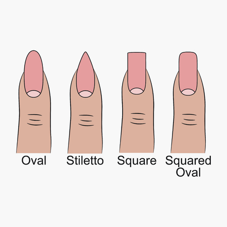 Different nail shapes. Fingernails forms for manicure. Vector illustration.