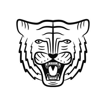 Tiger face. Roaring tiger head. Vector illustration.