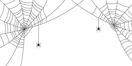 Spiders and web. Background with space for Halloween banner with with spiderweb and spider. Vector illustration.