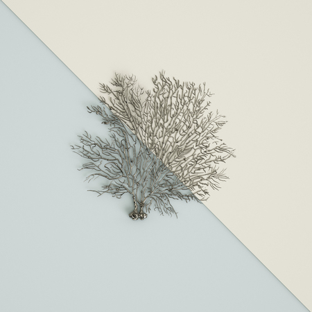 Silver coral fan sculpture on pastel blue-ivory background. Flat lay. Trendy fashion Style. Minimal Design Art. Digital illustration.3d rendering