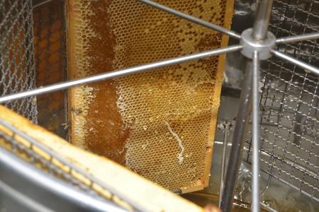 centrifuge: honeycomb frames into centrifuge