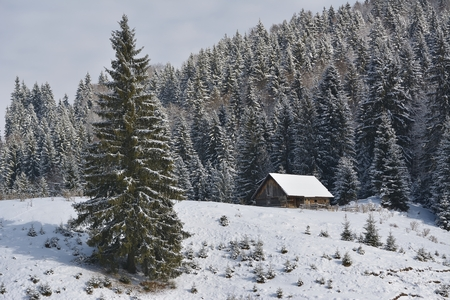 An old abandoned sheepfold covered in snow in the beginning of winter Stock Photo