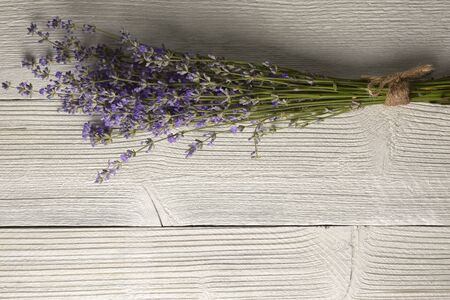 Fresh lavender flowers on white wood table background. Copy space for your text. Reklamní fotografie