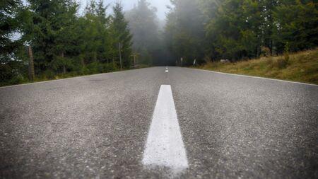 An asphalt road that goes through a misty dark misterious forest Фото со стока