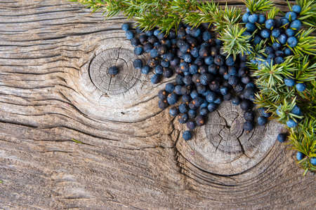 Juniper berries on a wooden background Stock Photo